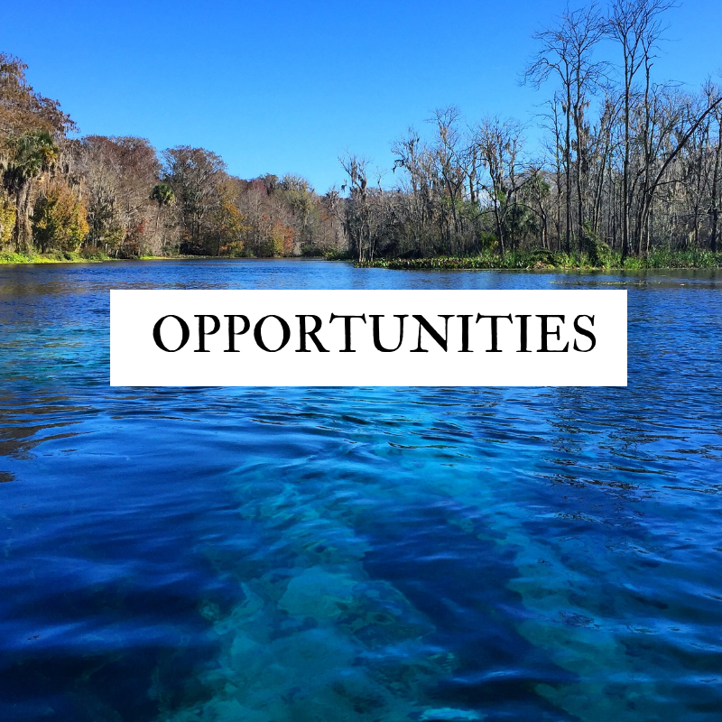 Florida For Families Opportunities