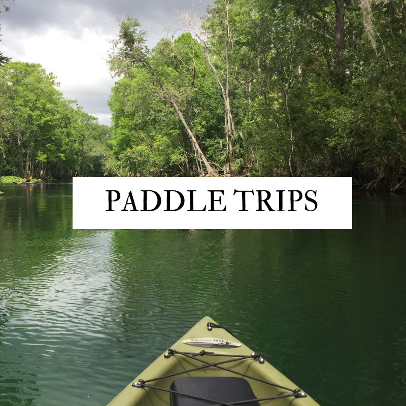 Florida Paddle Trips for Families