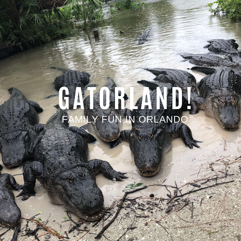 Gatorland- Family Fun with a Snap!